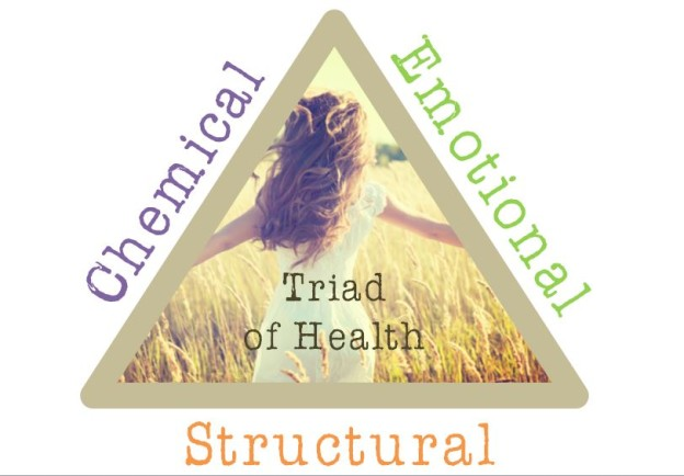 Detoxing as per the triad of health